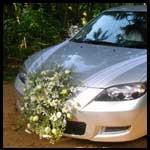 Prabath Flora