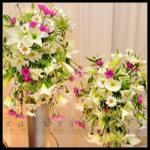 Malsara Bridal Flora