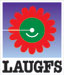 LAUGFS Holdings Limited