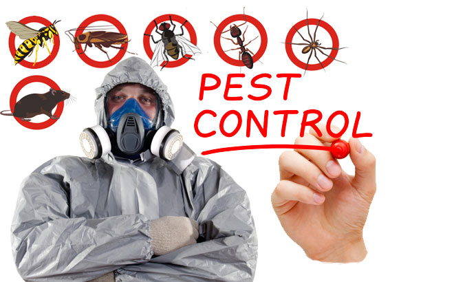 Green Pest Control Services (Pvt) Ltd