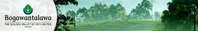 Bogawantalawa Tea Estates Plc