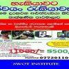 Advance phone repairing course