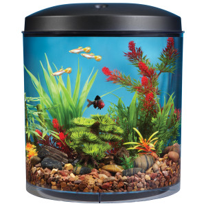 Silver Dollar Aquarium (Pvt) Ltd